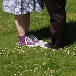 Converse in the daisies
