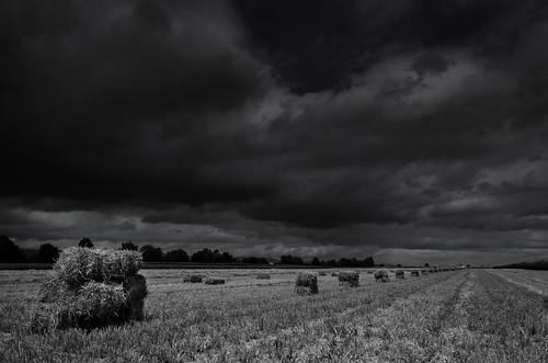 Bottes de paille sous un ciel orageux Paysage NB2