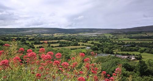 ireland landscape ailweecaves