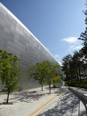 dongdaemun design plaza trees
