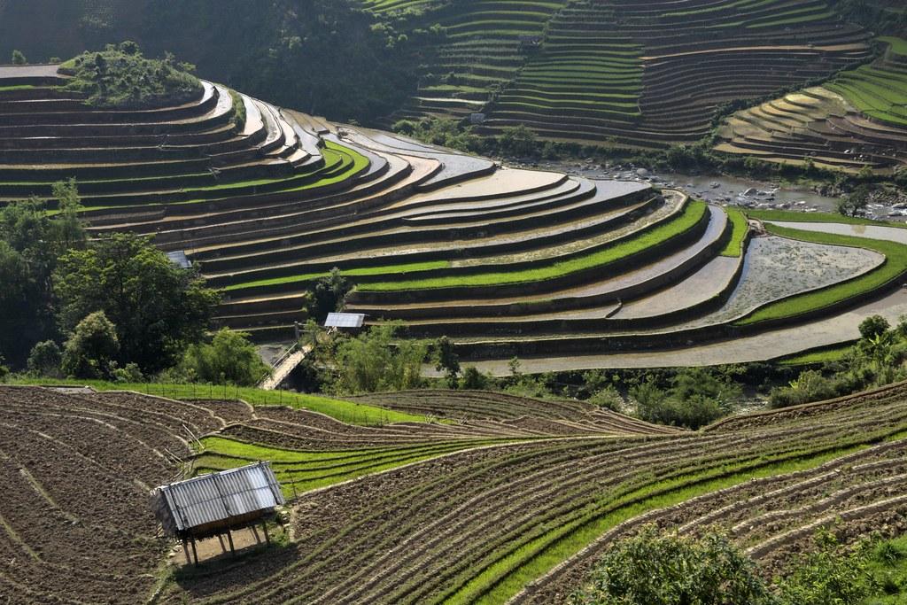 _DSC1979 : sur la route vers Mu Cang Chai, Vietnam Nord