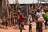 Key Afar market scene (3)