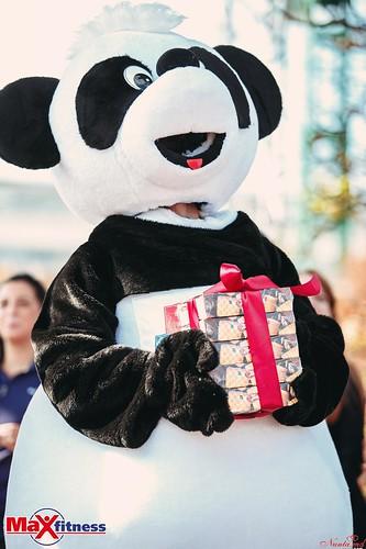 COLIBRI > Baby Panda на мероприятии Criterium 2016.