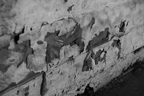 Urban Decay - Inglewood-8