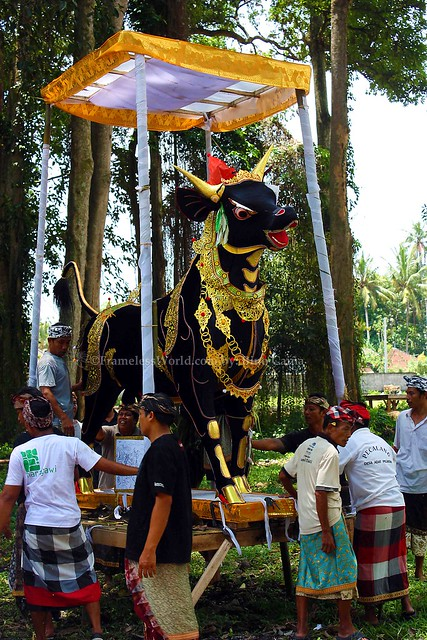 Balinese Cremation