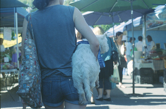 Lady carrying dog