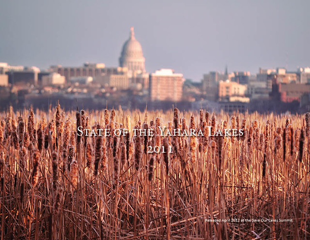 State of the Yahara Lakes 2011