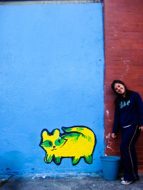 Blue Wall - Yellow & Green Raccoon-Cat