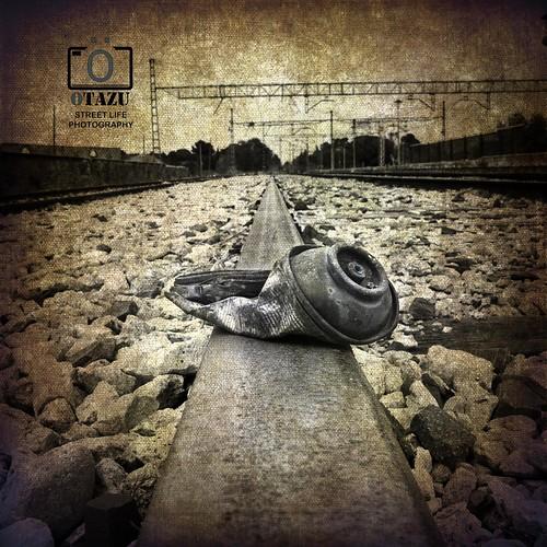 [ STREET LIFE - PHOTOGRAPHY ] by Otazu