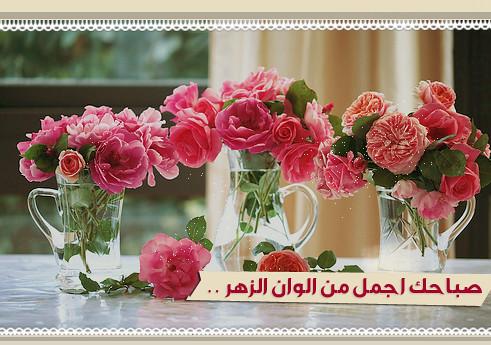 صباحك أحلى بذكر الله 7240192762_90923bcbb5_z