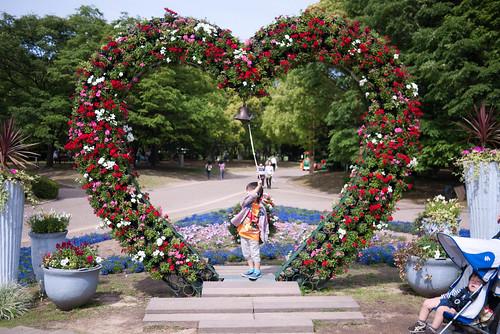 ハートの大花壇