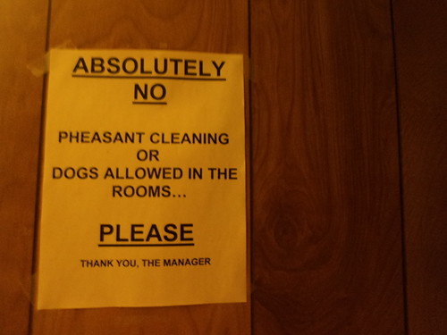 No Pheasant Cleaning