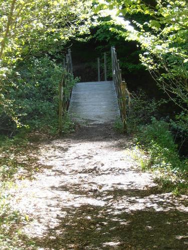 LA MATURE (chemin) 118