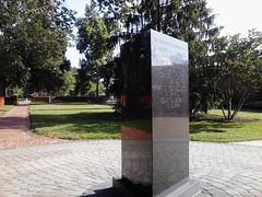 plinth by Teckelcar