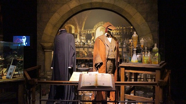 HARRY POTTER THE EXHIBITION - ArtScience Museum, Singapore (65)