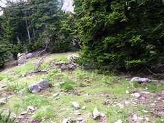 Sur la crête après Bocca Cilindinu : une clairière à bivouac