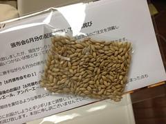 頒布会のおまけの麦芽