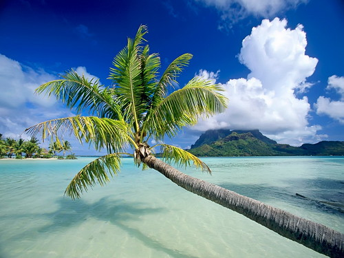The World's Best Beaches Bora-Bora-beach
