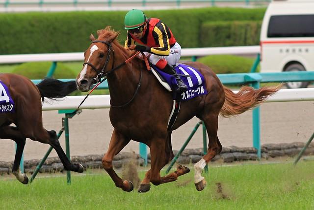 宝塚記念勝ち馬 オルフェーヴル(池添謙一)