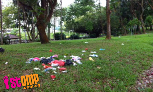 STOMPer's plea to park users: Please throw your litter into rubbish bins
