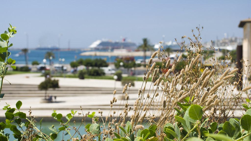 Port - Palma de Mallorca