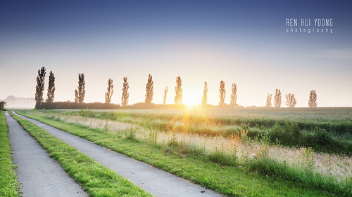 sunrise coton countryside country side reserve rural trees fields field path footpath foot road leading lines line cambridgeshire cambridge landscape scape europe european travel university unitedkingdom england great britain uk gb greatbritain city
