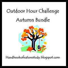 OHC Autumn Bundle Button