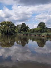 Oakbank Park
