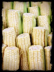 meal(0.0), dish(0.0), snack food(0.0), sweet corn(1.0), yellow(1.0), vegetarian food(1.0), maize(1.0), corn on the cob(1.0), produce(1.0), food(1.0), corn on the cob(1.0), cuisine(1.0),