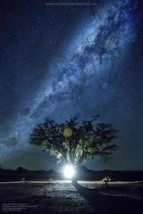 Via Láctea desde San Pedro de Atacama