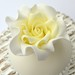 Close up flowerpaste rose by Hilary Rose Cupcakes