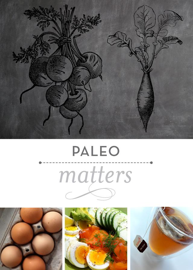 PaleoMatters