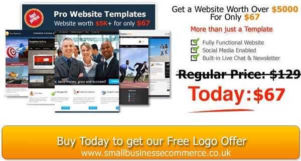 Professional Website for Only $67