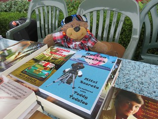 Teddy Tedaloo at the Waterfront Book Festival
