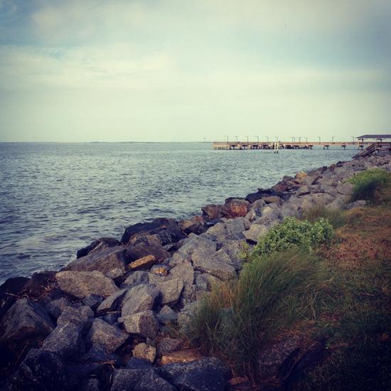 photo(37)