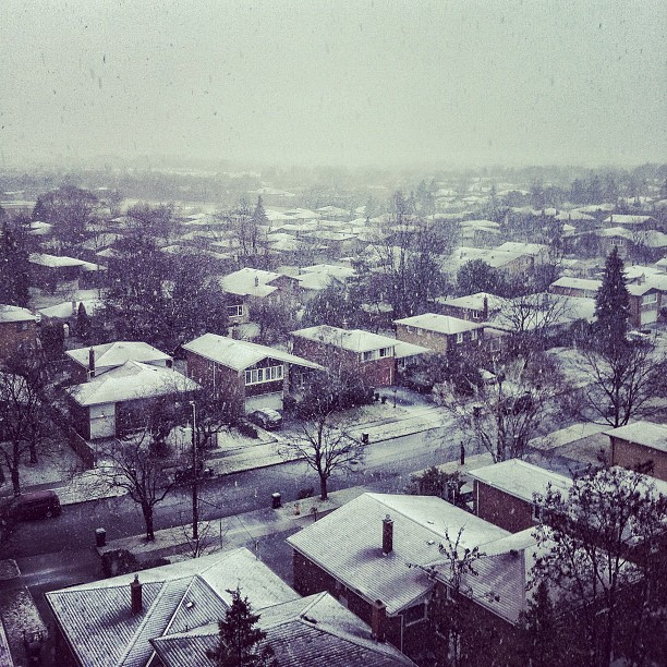 Snowing #iphone4 #snapseed #snow #landscape