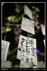 Photo:メッセーグ/Message By Michiyo Kurosawa