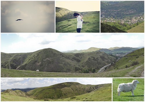Long Mynd, Shropshire Hills, Church Stretton