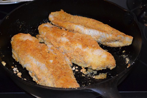 Oven Baked Cornmeal Crusted Catfish in Cast Iron Skillet