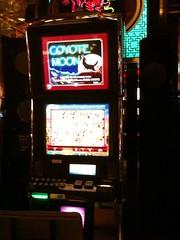 Video Slot Machine: Coyote Moon