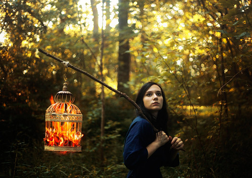 the fire catcher.