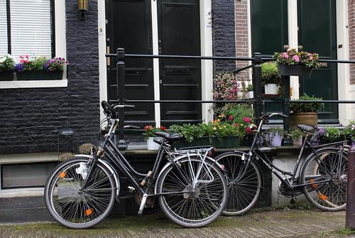 Amsterdam Doors