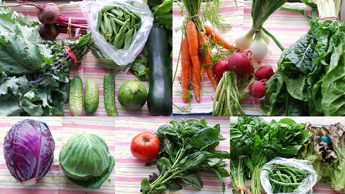 CSA Week 3: Veggies