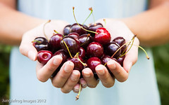 Handful of cherries