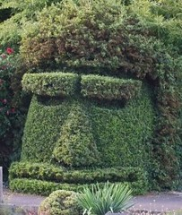 World's creepiest hedge that you wouldn't want to turn your back on