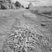 Dirt Road...