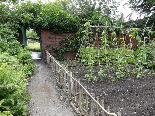 The vegetable garden at Hilltop