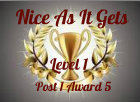 nice as it gets level 1 iaward