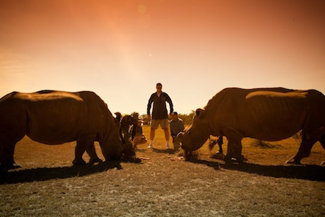 August 2012 - Yao Ming meets two rhinos in Kenya