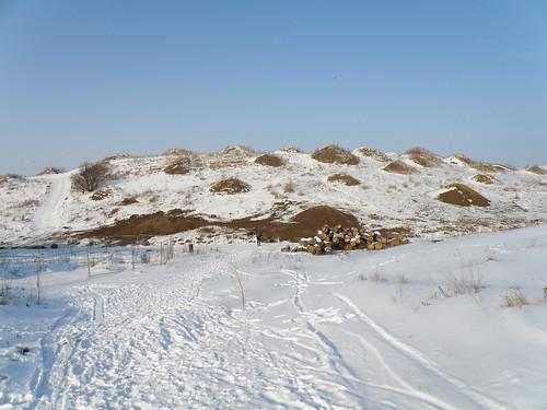 Stige-Oe-Landskab-2010-02-16